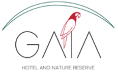 Luxury hotel in Manuel Antonio, Gaia